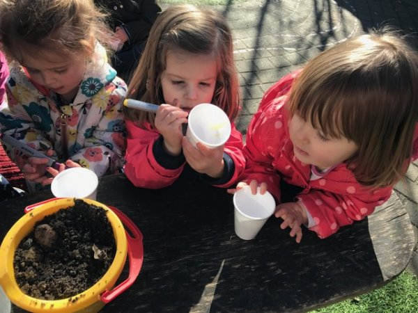 Busy Bees at Rothamsted Lodge gallery photo 1