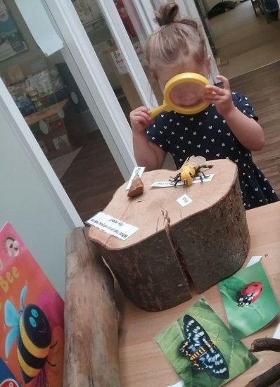 Busy Bees in Browns Wood gallery photo 3