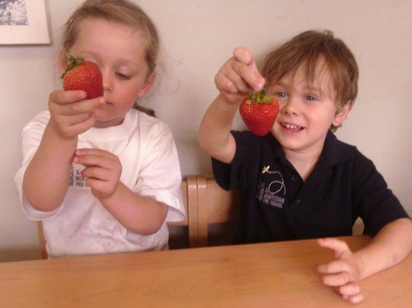 St Albans Nursery and Montessori Pre-school gallery photo 9