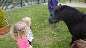 Charlotte the pony came to nursery.