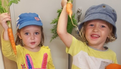 We have grown some carrots in our garden and they have grown really well!