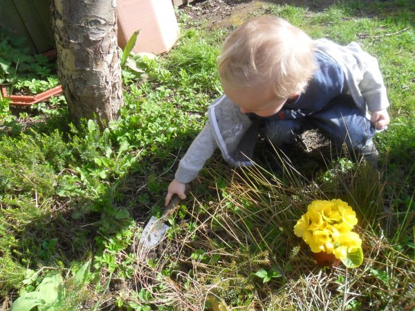 Landscape Gardening Apprenticeships : Gardening apprenticeships national trust related keywords