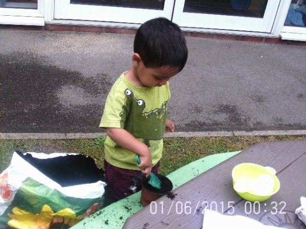 Babies planting seeds Photo-1