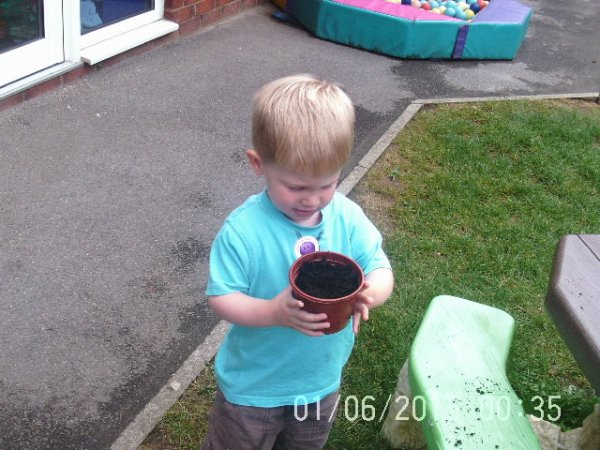 Babies planting seeds Photo-2