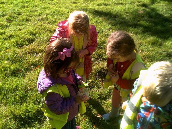 Forest School Photo-1