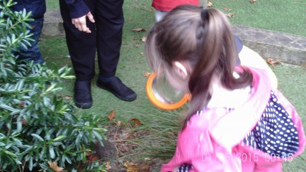 Busy Bees Bug Hunt Photo-1