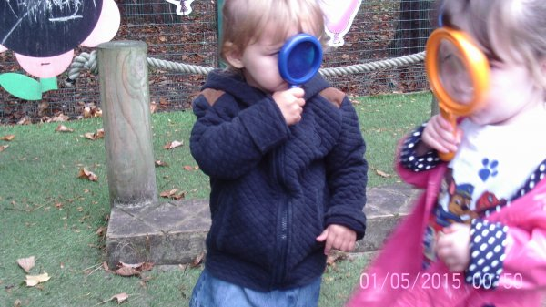 Busy Bees Bug Hunt Photo-3