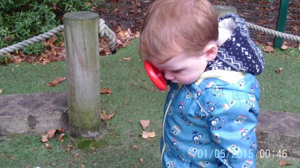 Busy Bees Bug Hunt Photo-4