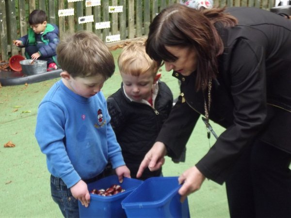 Pre- School Autumn and Sorting Activities Photo-1