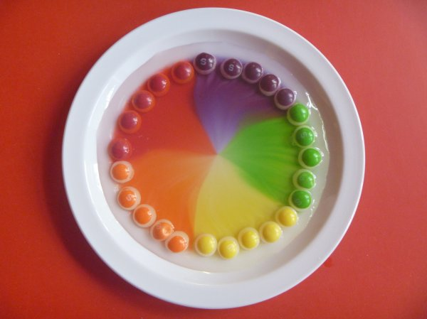 Skittles Experiement  Photo-4