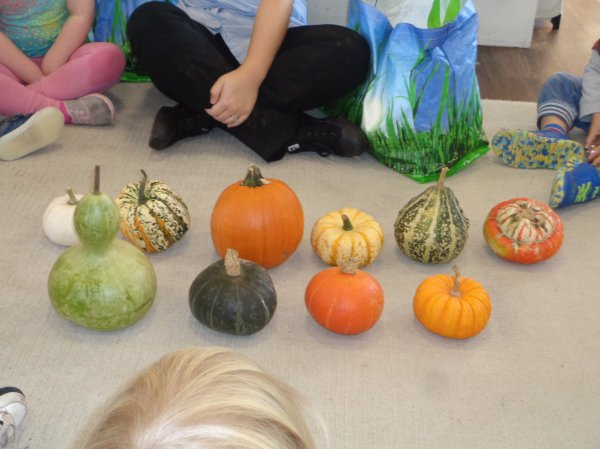 Super Spooky Pumpkin Competition Winners Announced Photo-4
