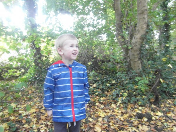 A autumn bear hunt with seahorses Photo-1