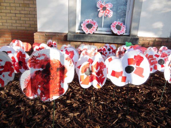 Look at our poppy garden Photo-1
