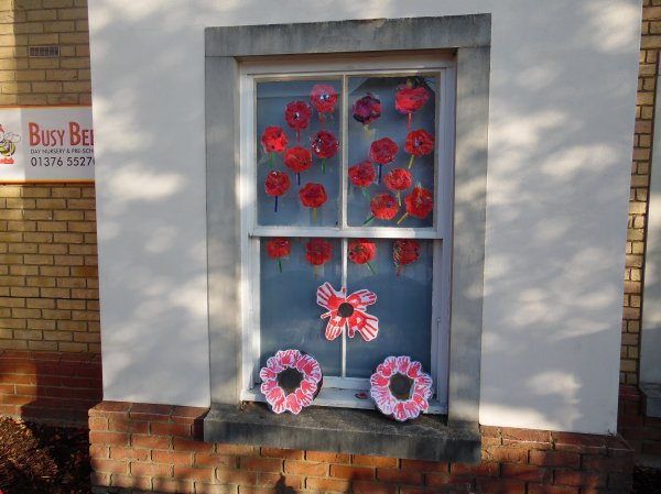 Look at our poppy garden Photo-3