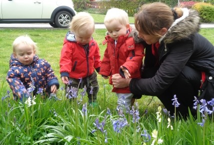 Bluebell exploring with Sunshines! Photo-2