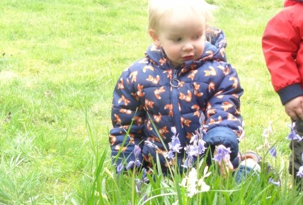 Bluebell exploring with Sunshines! Photo-4