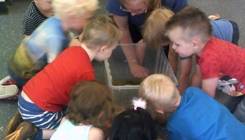 Nursery news story for Busy Bees at Great Yarmouth