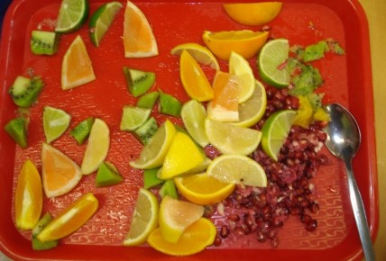 Making Our Own Fruit Juice! Photo-1
