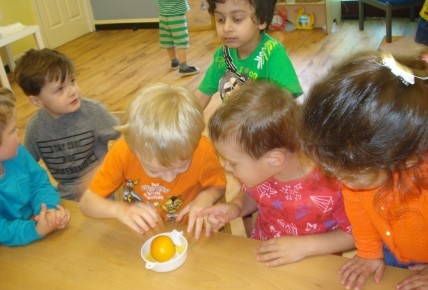 Making Our Own Fruit Juice! Photo-2