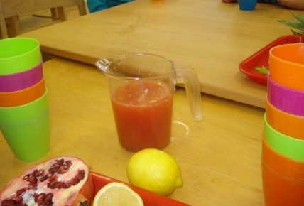 Making Our Own Fruit Juice! Photo-4