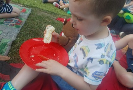 Teddies Bears Picnic - 16/06/17 Photo-2