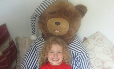 Teddy Bears Picnic Photo-2