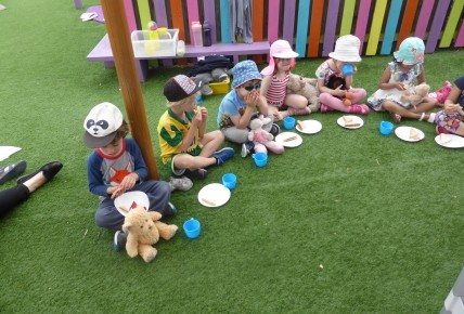 Teddy Bear Picnic Day  Photo-4