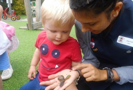 Toddlers and their Mini Beasts Photo-4