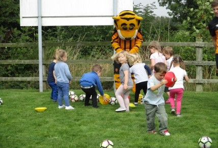 Playing football with a tiger Photo-2