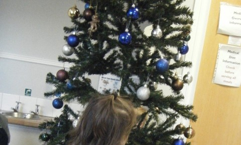 Active Learners Put Up The Christmas Tree Photo-2