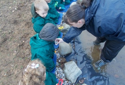 Our Brand New Forest School ! Photo-2