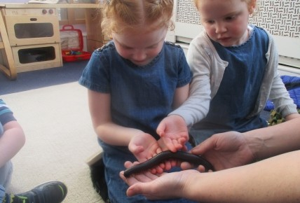 Zoo Lab Visits Countesthorpe  Photo-6