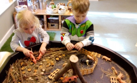 exploring pigs in preschool! Photo-1