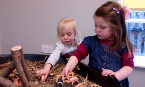 exploring pigs in preschool! Photo-2