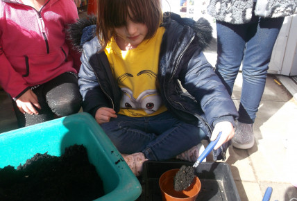 Planting Seeds Photo-1