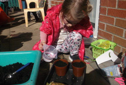 Planting Seeds Photo-2