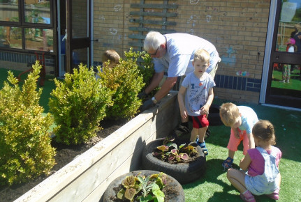 Glorious Gardening Grandad Photo-3
