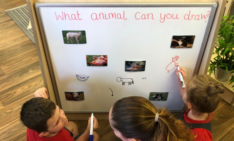 foundation class- Animal provocation Photo-1