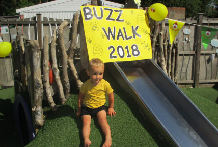 BUZZ WALK Photo-1